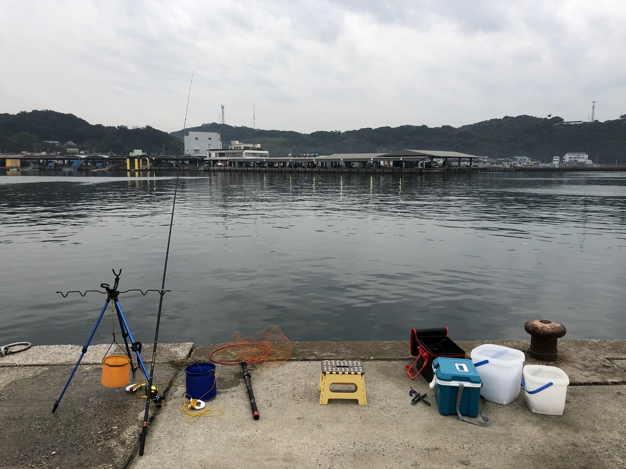 豊浜漁港 釣り